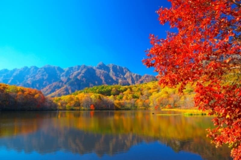 紅葉の鏡池