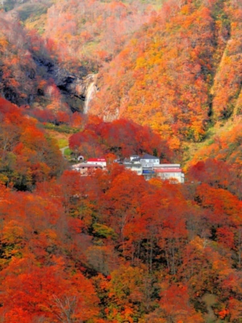 紅葉の燕温泉