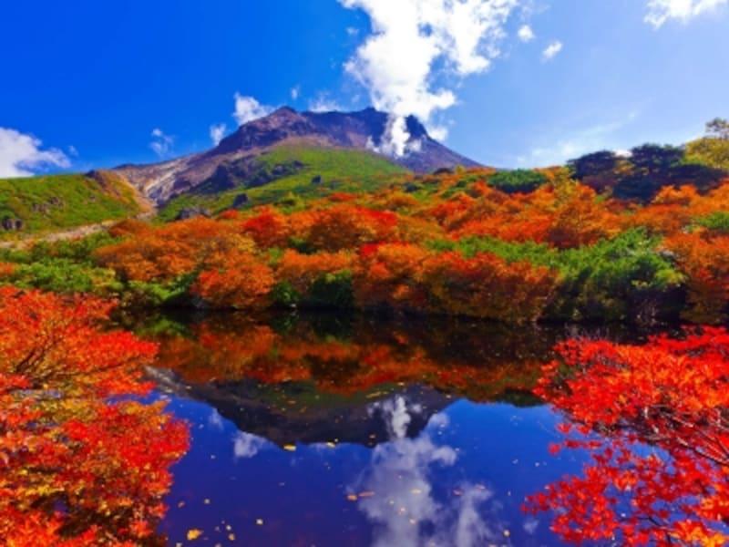 那須茶臼岳の紅葉