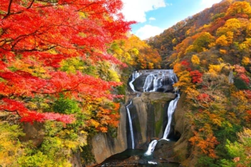 袋田の滝と紅葉
