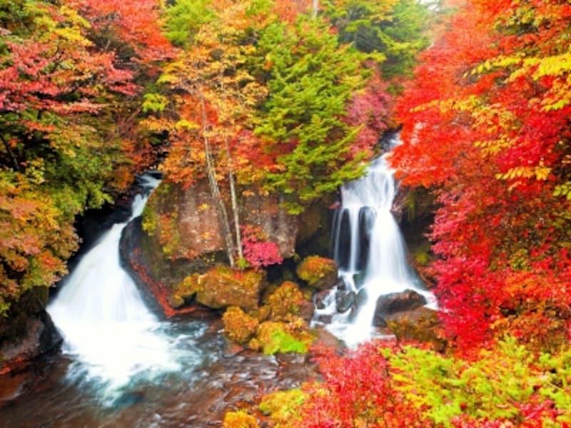 関東の紅葉名所で人気の竜頭の滝