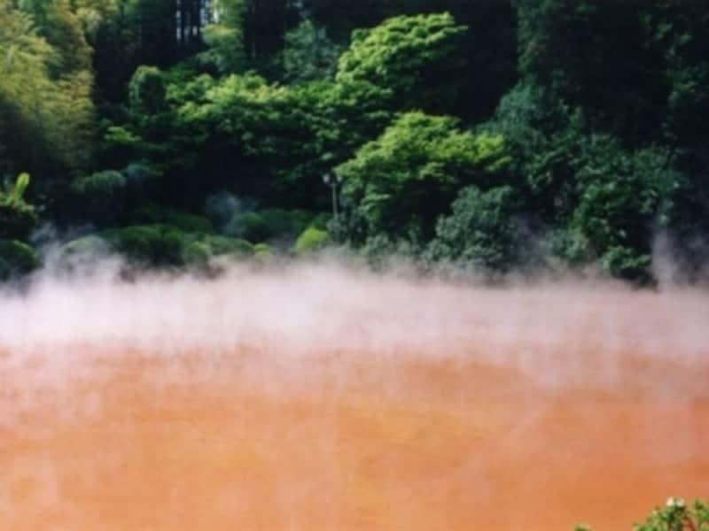 別府・血の池地獄