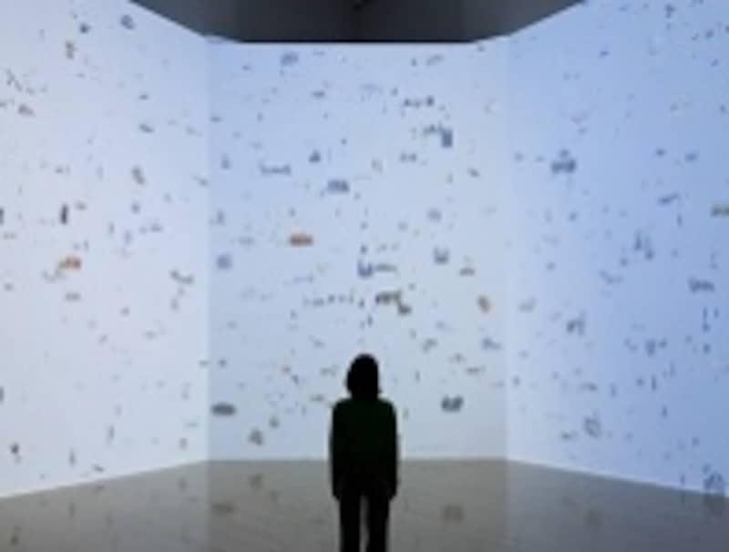 「あることbeing/something」2011、兵庫県立美術館での展示風景undefined撮影:表恒匡