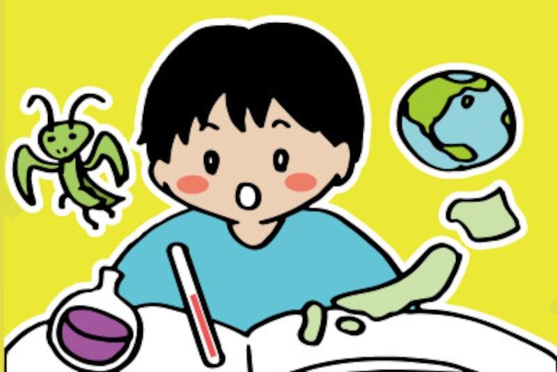中学受験の理科・社会の学習範囲は公立中学で習う内容よりも学習する項目が多く、深く掘り下げた内容です。