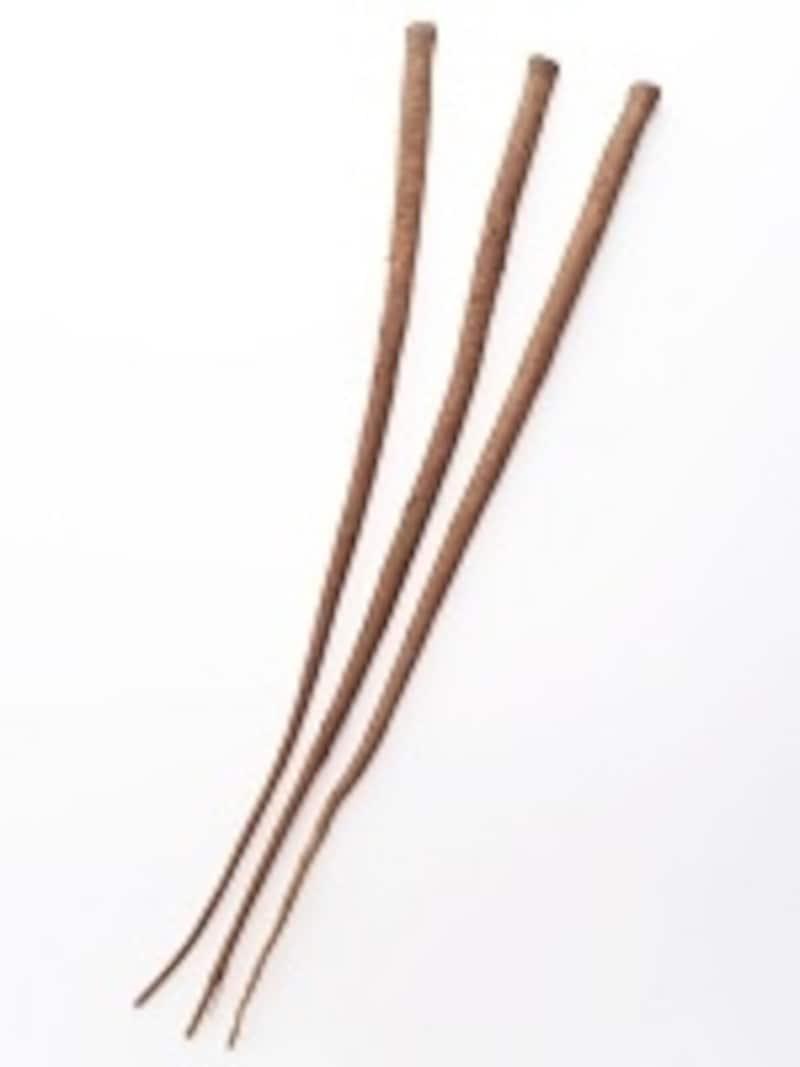 写真は「ゴボウ」ですが、アンジェリカも「根」。根は薬効が高いものが多い傾向にあります。