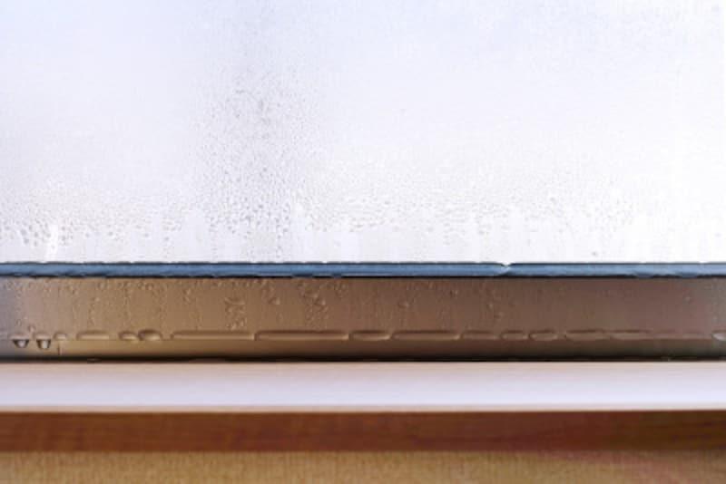 チャタテムシの発生予防は、とにかく乾燥が大切!結露対策を怠らないようにしましょう