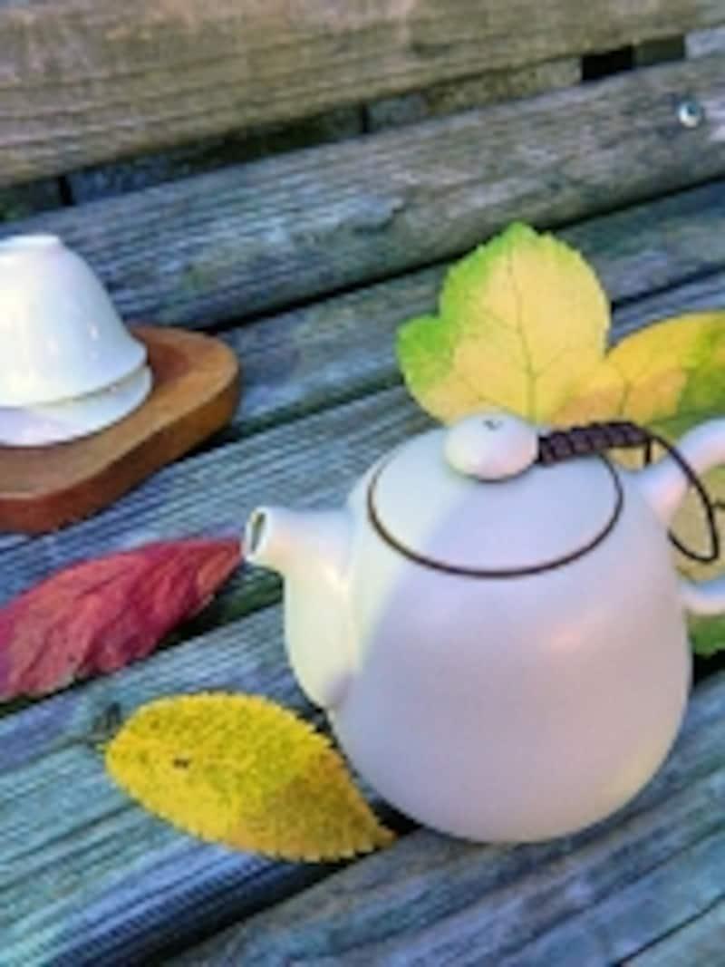 ベンチで茶