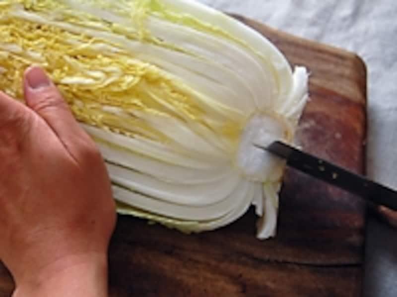 白菜をカットして保存する場合:カット白菜は根元に切れ込みを入れて生長を止めて保存します。