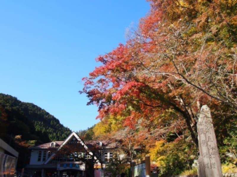 京王線の高尾山口駅から5分ほど歩くとケーブルカーの駅がある。