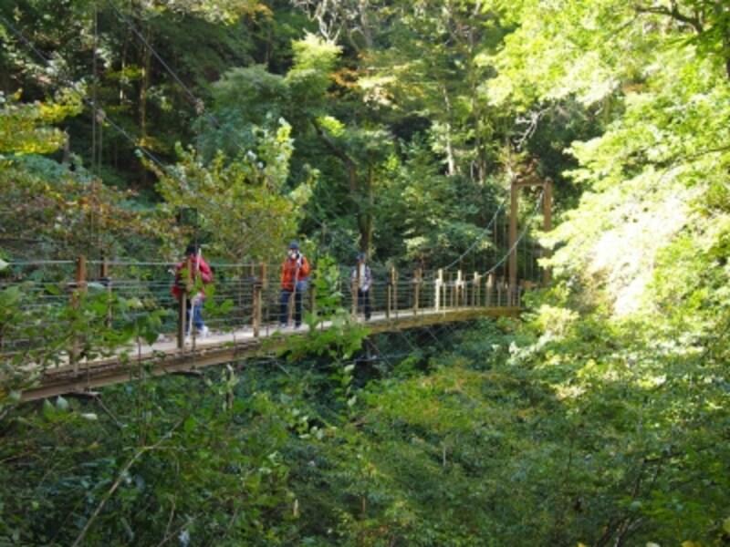 山道の中に突然、吊り橋が現れる