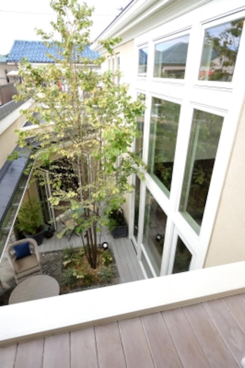 効果的な植栽が光と風を調整し、より快適な住まいをつくります