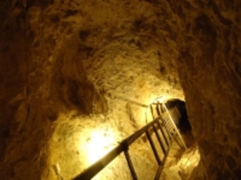 地下発掘場跡は広い