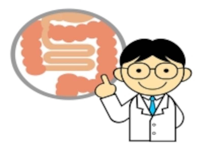 大腸の説明