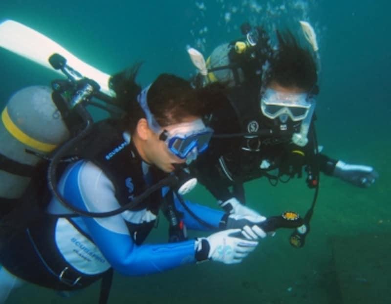 「バディ・システム」はダイビングでの水中トラブルを避けるための基本!