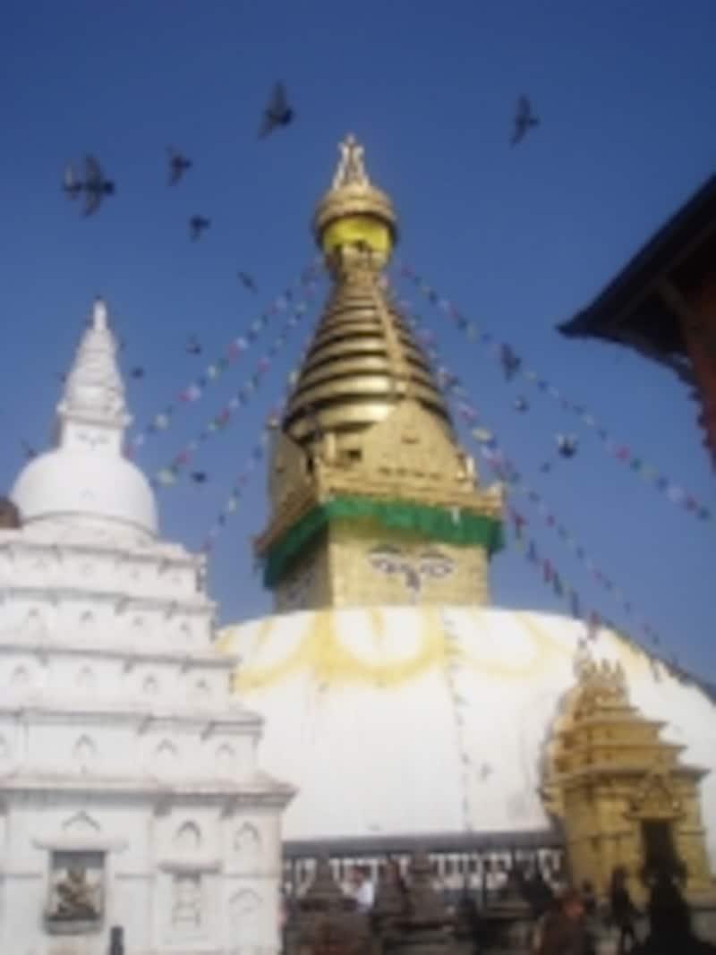 スワヤンブナートの仏塔