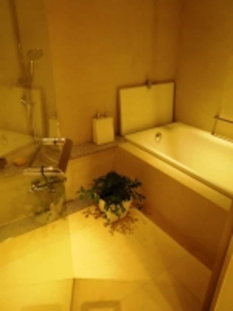 コンセプトルーム2浴室