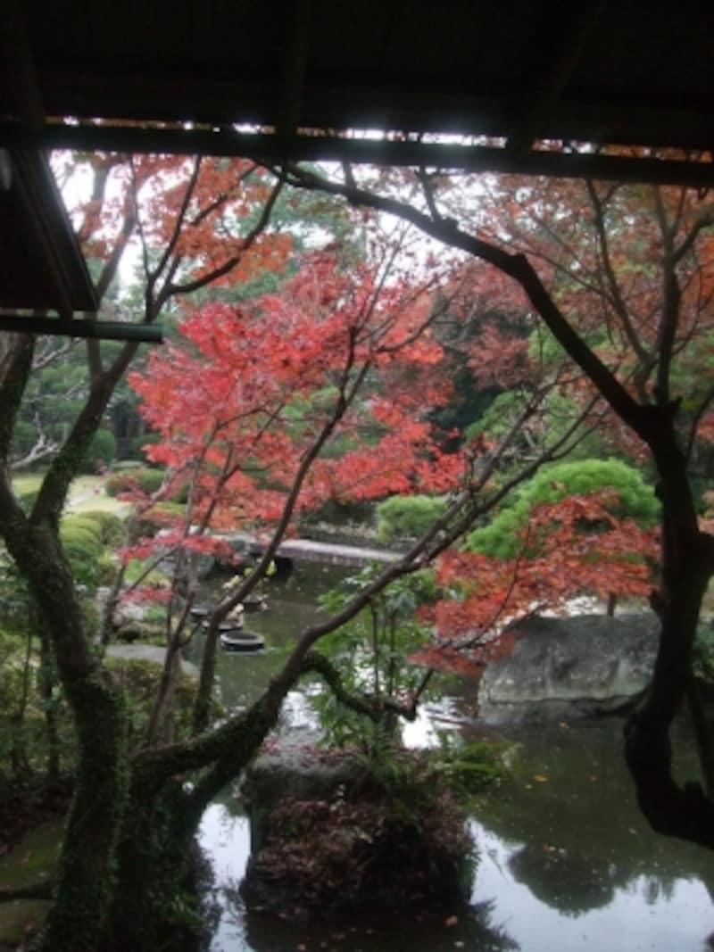 心が落ち着く日本庭園