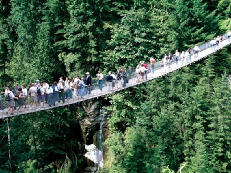 人気アトラクションの一つキャピラノ吊り橋。吊り橋周辺には簡単なハイキングトレイルが多数(C)TourismBC