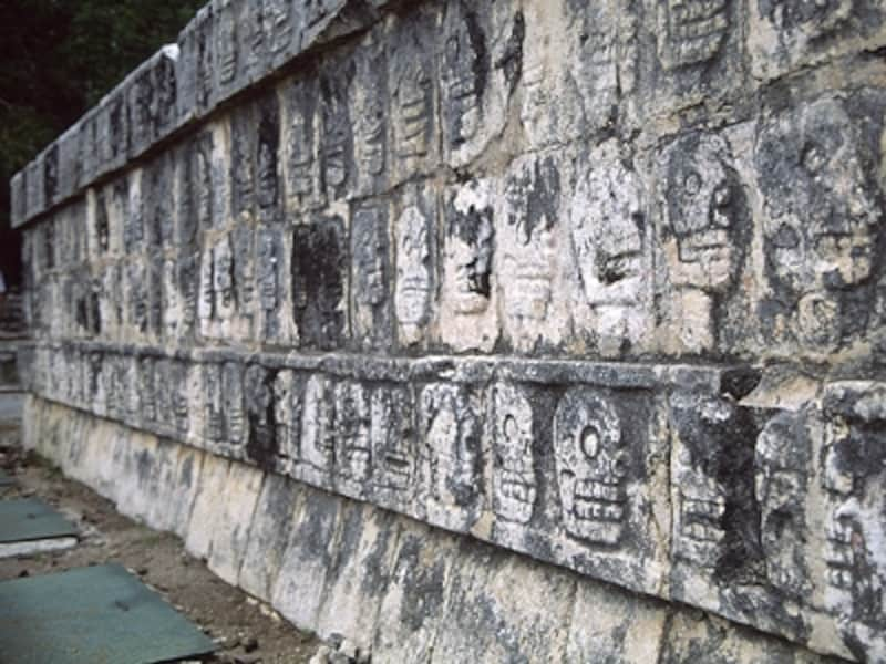 ツォンパントリの基壇に刻まれた頭蓋骨のレリーフ。この上に生け贄の生首が並べられた©牧哲雄