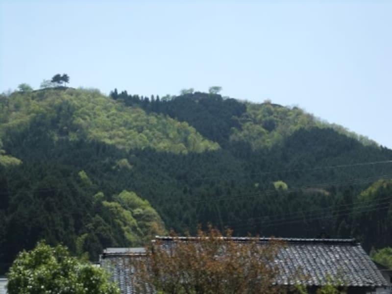 竹田城址(2)