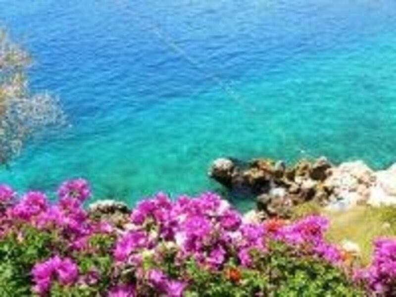夏の地中海