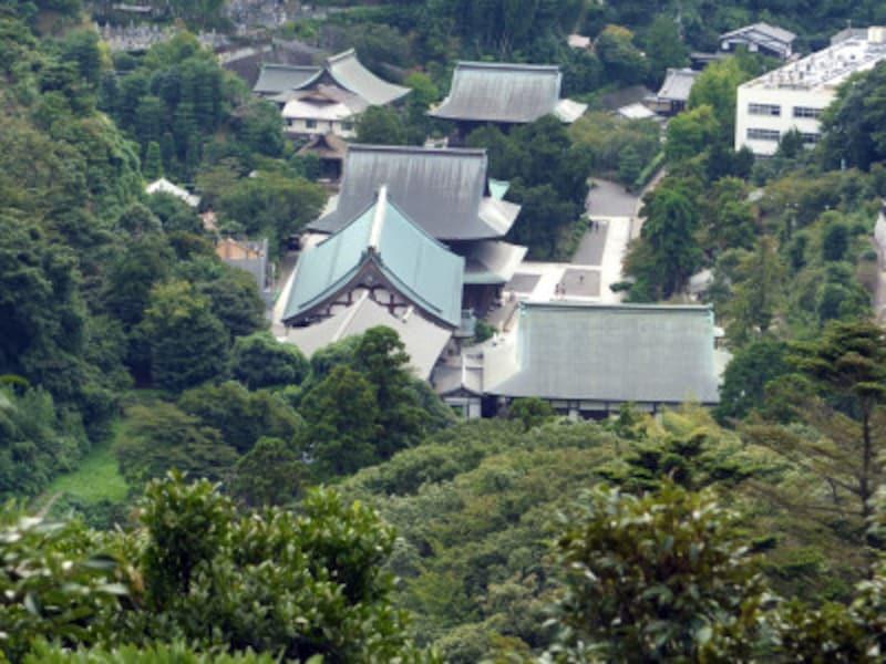 天園ハイキングコースの展望台からは、建長寺の建物が小さく見える