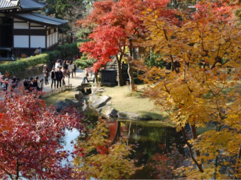 紅葉の季節の円覚寺境内