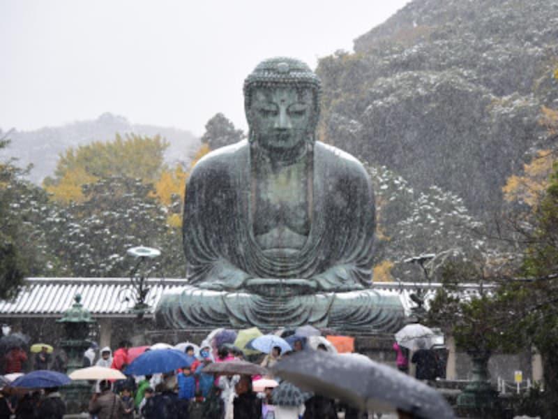 雪の日の鎌倉大仏