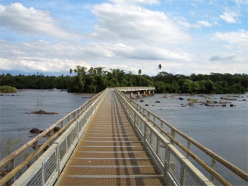 スケールの大きな自然の中には、歩きやすいようにトレイルが作られている