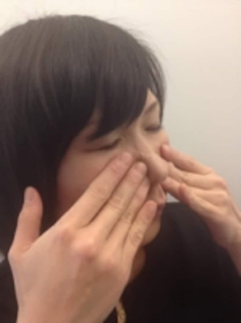 鼻の彫り作りイメージ