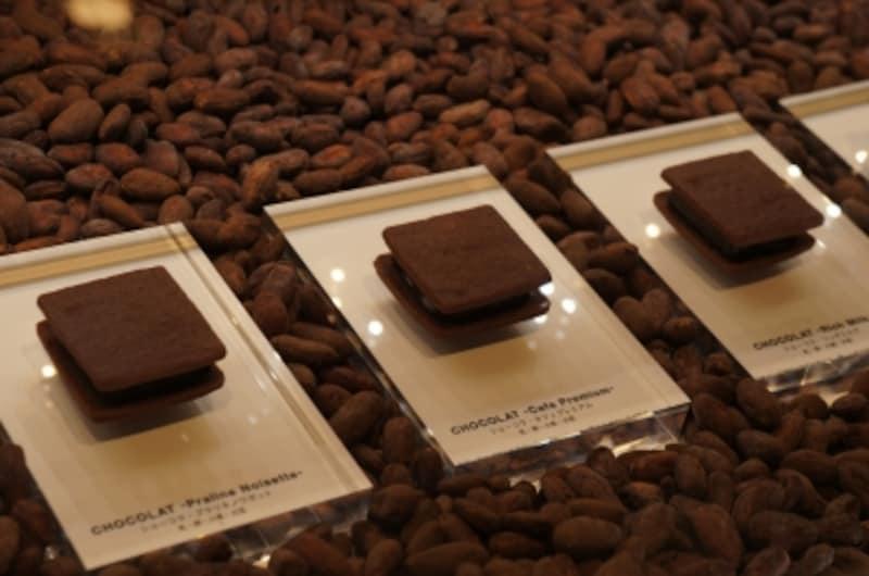 Chocolat(ショーコラ)