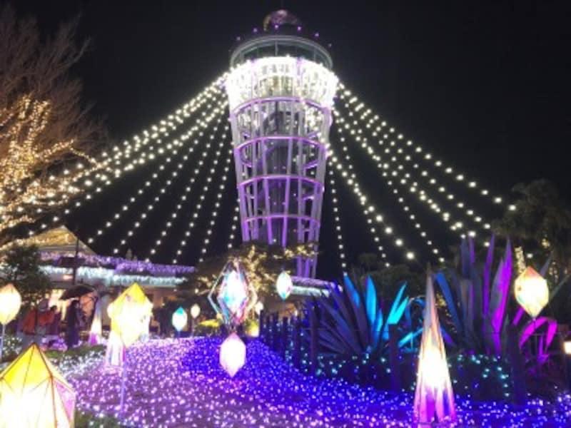 シーキャンドルを中心に広がる「光の大空間」(2019年11月28日撮影)
