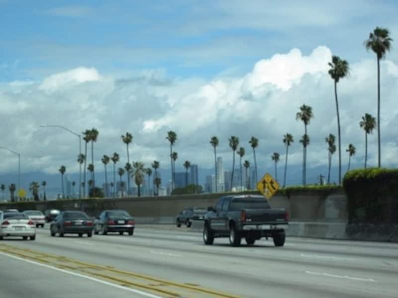 ロサンゼルスを象徴する、青い空、パームツリー、そしてフリーウェイ