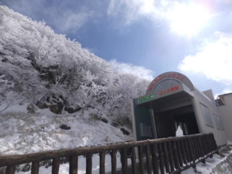 御在所岳の樹氷(4)