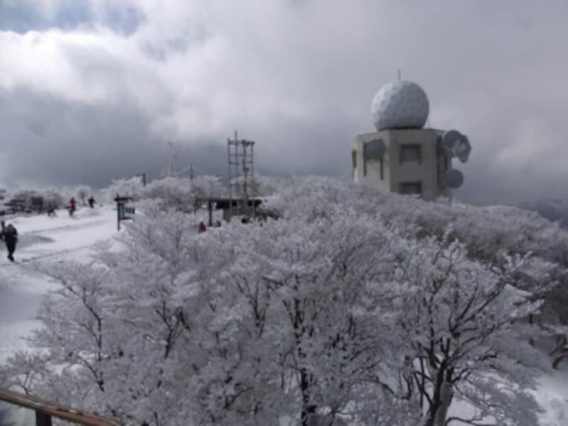 御在所岳の樹氷(6)