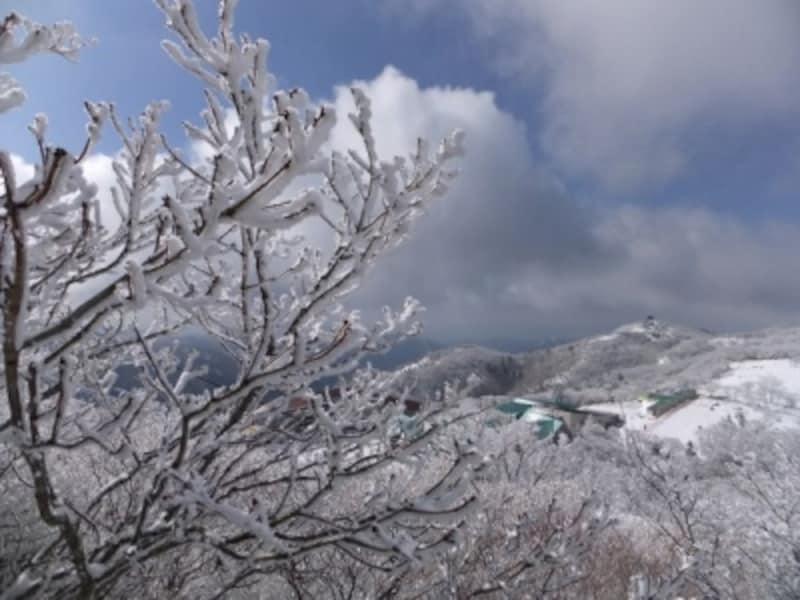 御在所岳の樹氷(3)