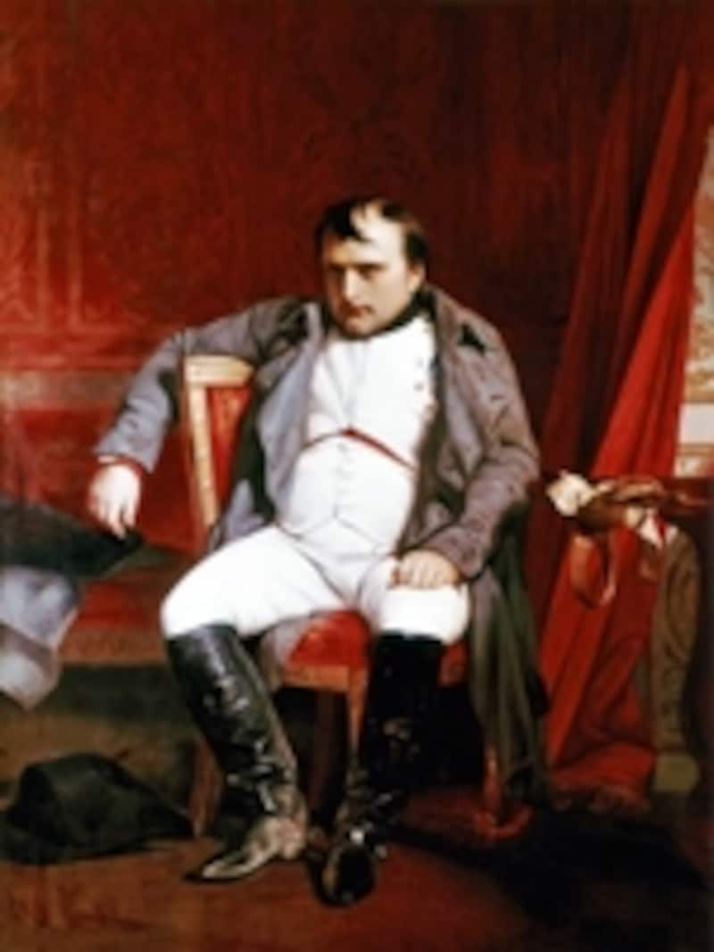 フォンテーヌブローのナポレオン