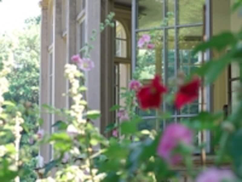 庭がきれいな家はリフォームに興味がある人が多かった。