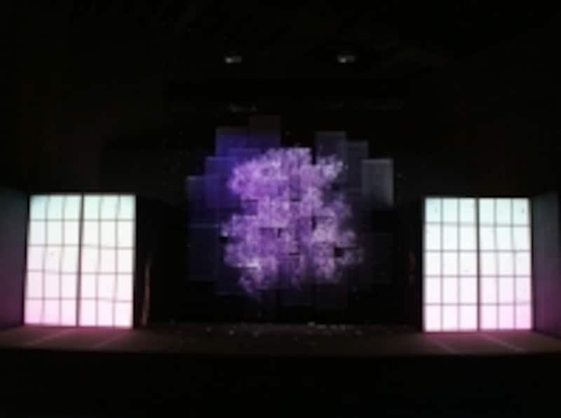伝統工芸と最新技術の融合『江戸桜ふぶき』