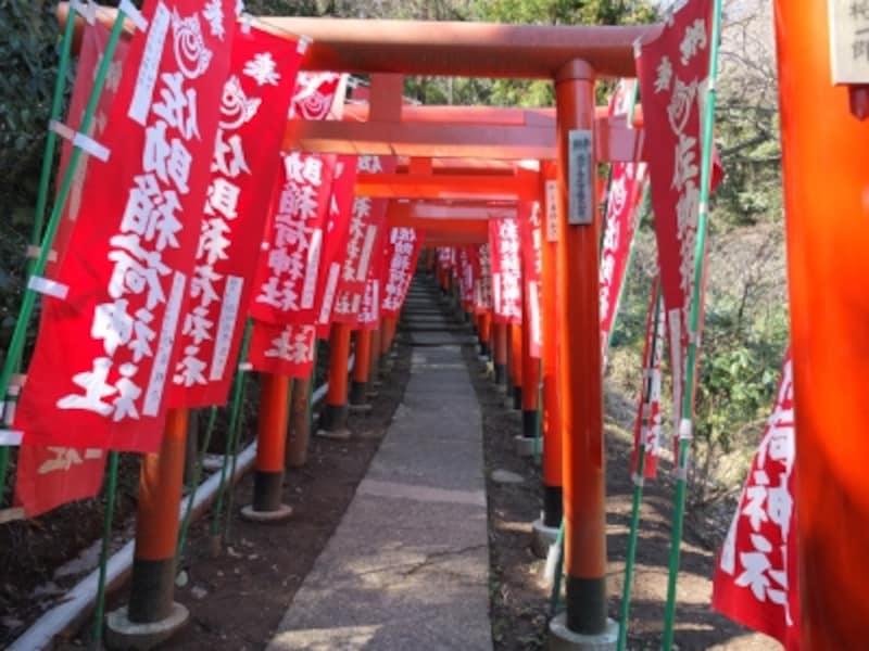 朱色の鳥居が立ち並ぶ佐助稲荷神社参道