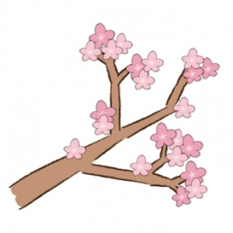 桜(さくら)のかわいい無料イラスト集白黒・カラー
