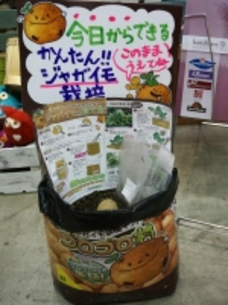 ジャガイモ収穫キット「ゴロゴロ村」