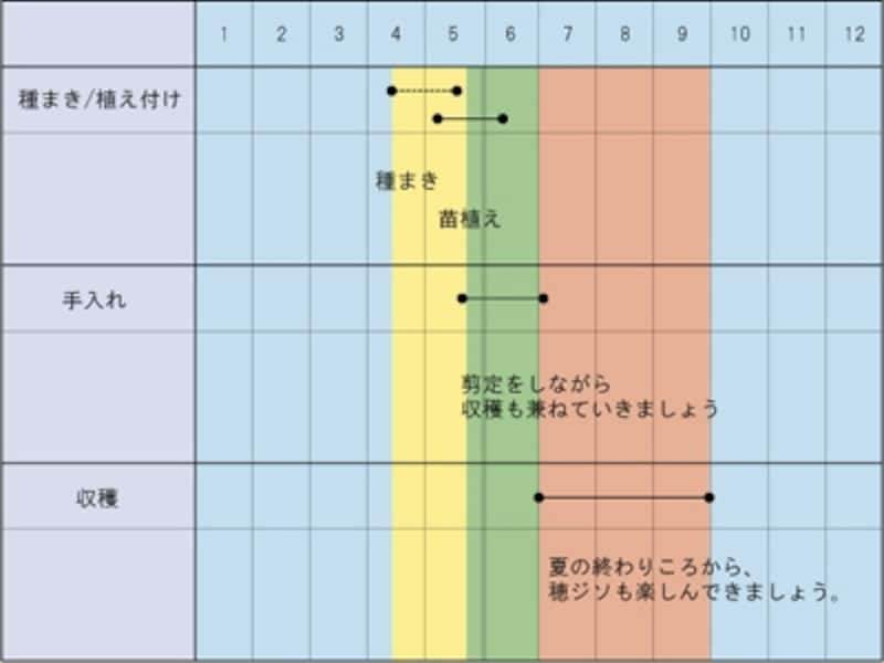 シソundefined栽培カレンダー
