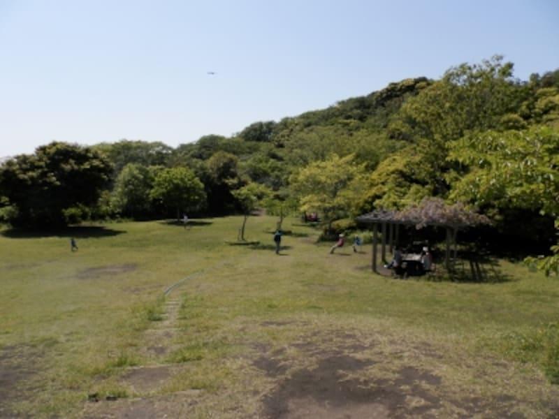 鎌倉市子ども自然ふれあいの森より衣張山方面を望む