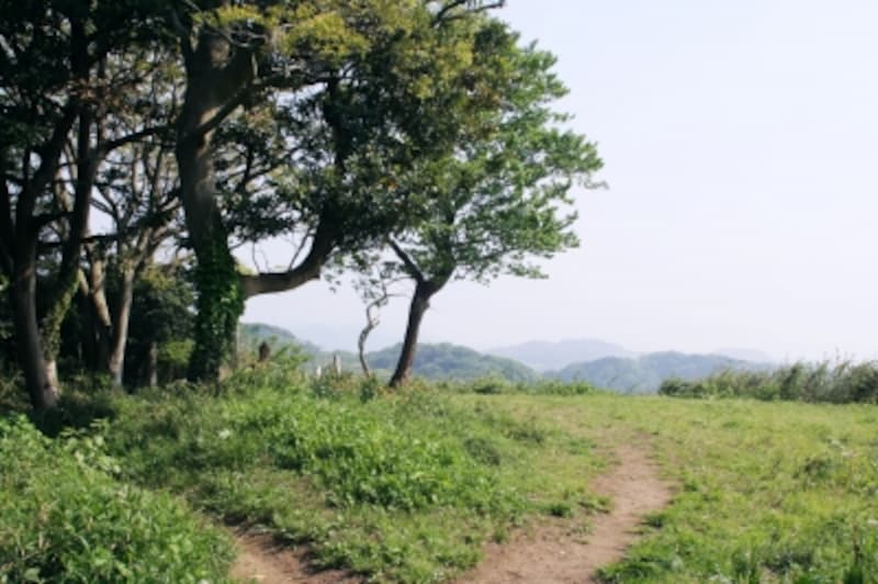 浅間山の山頂