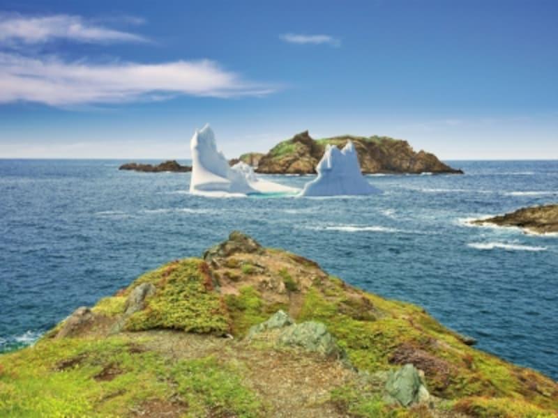 ニューファンドランドは極圏以外で氷山が手軽に見れる数少ない場所(C)CTC