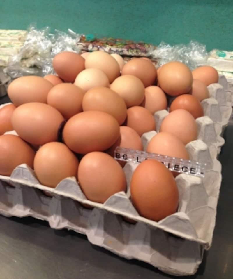 実際の卵を使っています