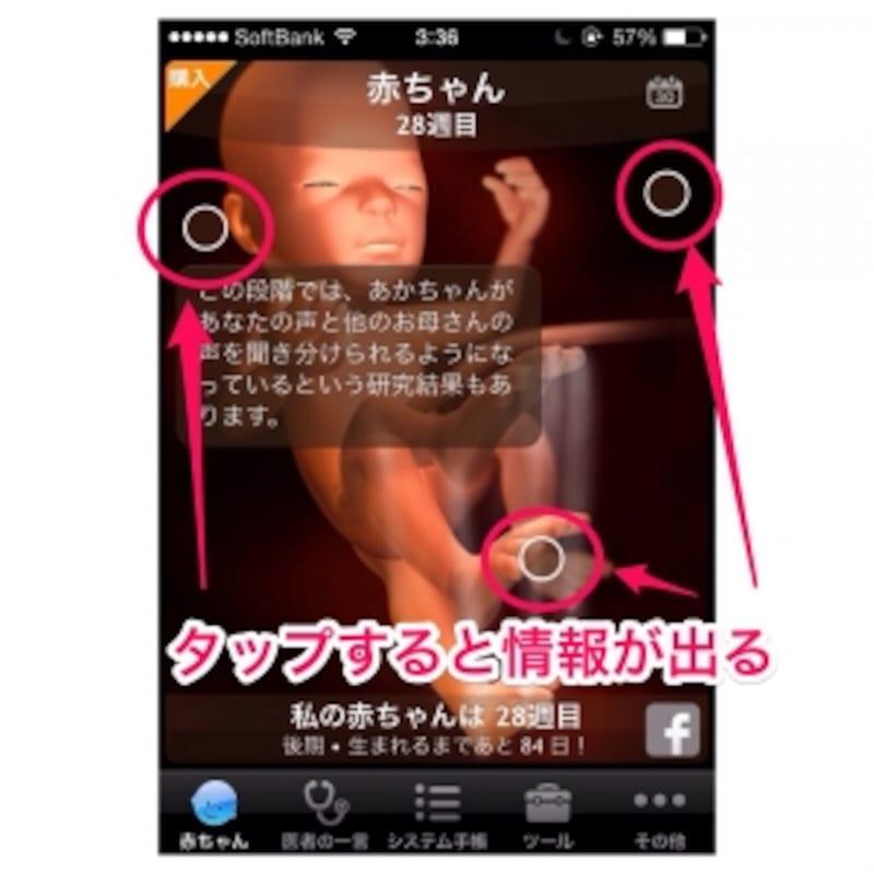 妊娠アプリ1