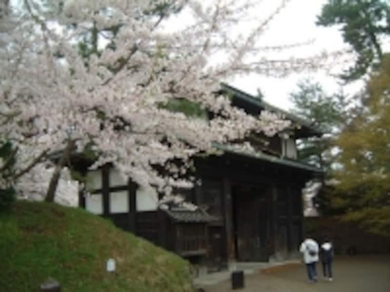 弘前城の桜(7)/南内門をくぐり二の丸へ
