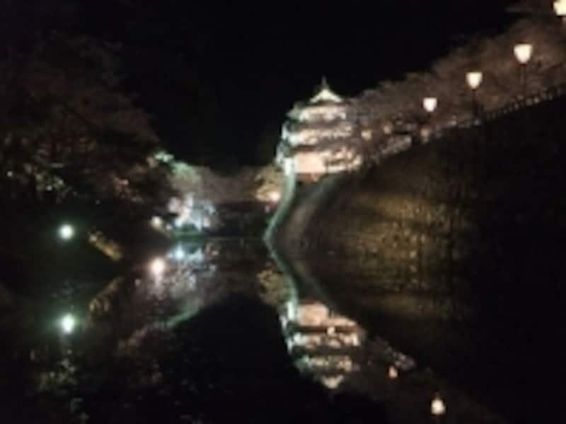 弘前城の桜(18)/天守閣と桜のライトアップ